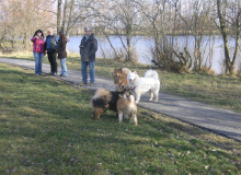 Ginga Februar 2014 Familientreffen Brusendorf